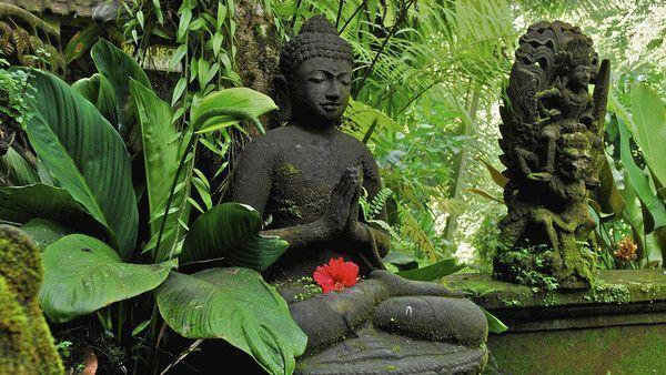 Bouddha - Page 2 Cb2324a2